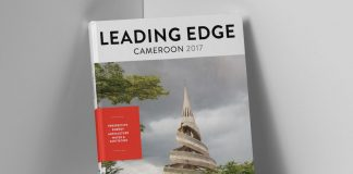 cameroon 2017 leading edge investment guide